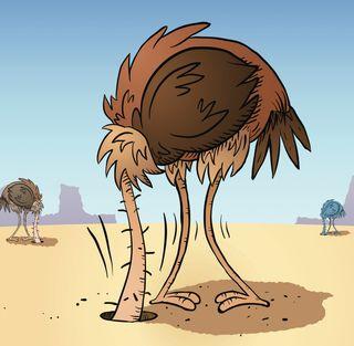 ostrich-sand.jpg